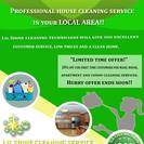 Lil Shine Cleaning Service's Photo