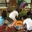 Pincushion Hill Montessori School's Photo