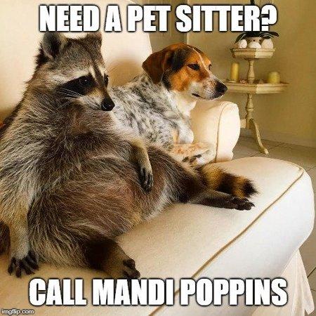 Mandi Poppins Pet Care - Care com Orlando, FL