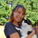 Kitty Kat Time's Photo