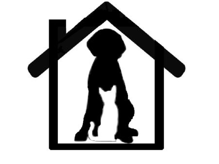 black dog pet sitting and home services port charlotte fl. Black Bedroom Furniture Sets. Home Design Ideas