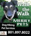 Photo for Pet Care Professionals Wanted