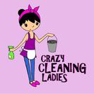 Crazy Cleaning Ladies's Photo