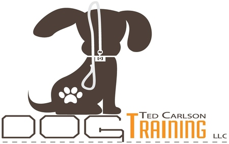 Ted carlson dog training llc care mandeville la ted carlson dog training offers pet sitting and dog walking services to the northshore and new orleans areas all of our pet sitters and dog walkers are reheart Choice Image