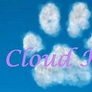 Cloud K-9's Photo