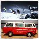 Doggie Beach Bus's Photo