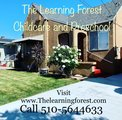 The Learning Forest's Photo