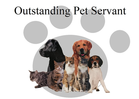Pet servant care arvada co we are a dog cat grooming salon as well as self wash grooming solutioingenieria Gallery