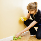 The Professional Cleaners's Photo