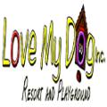 Love My Dog Resort & Playground-Downtown's Photo