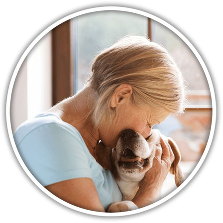 Kelly's Pet Services-Irmo - Care com Irmo, SC
