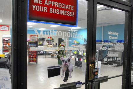 Muttropolitan care waldorf md we are a southern maryland based healthy pet food self service dog wash full service grooming and pet supplies business located in southern maryland s solutioingenieria Choice Image