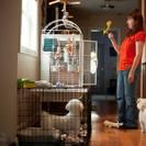 The Pet Nanny & Dog Walker's Photo
