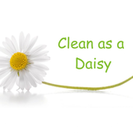 Clean as a Daisy's Photo