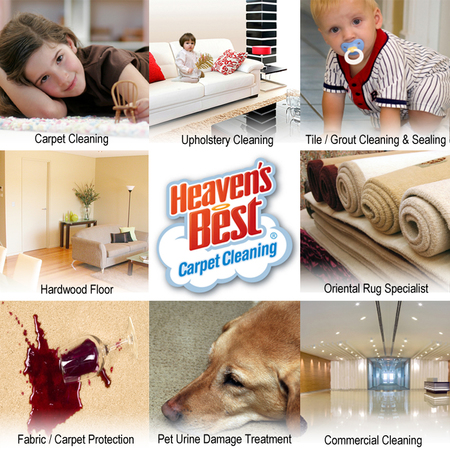 Heaven S Best Carpet Cleaning Lewisburg Pa Care Com Milton