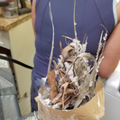 The Lint Man Dryer Vent Cleaning's Photo