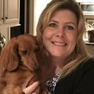 Wags to Whiskers In-Home Pet Sitting & Dog Walking's Photo