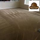 Pro Steam Carpet Care's Photo