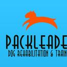Pack Leader Help: Rehabilitation & Training's Photo