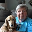 LOV-IN-CARE Petsitting & Boarding's Photo