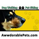 Awwdorable Pets's Photo