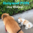 Hollywoof Pups (Dog Walking)'s Photo