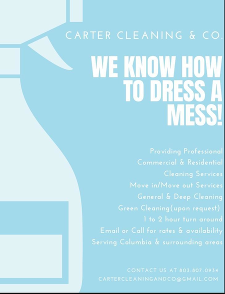 Carter Cleaning And Company Care Com Columbia Sc House