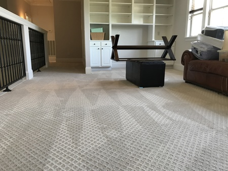 Sparky Carpet Cleaning Care Baton Rouge La House Cleaning Service