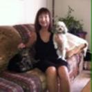 The Pet Nanny, LLC's Photo