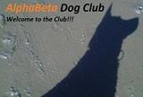 daly+city+doggie+boarding