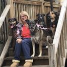 Top Dog Pet Care's Photo