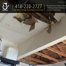 Flood Damage Pro's Photo
