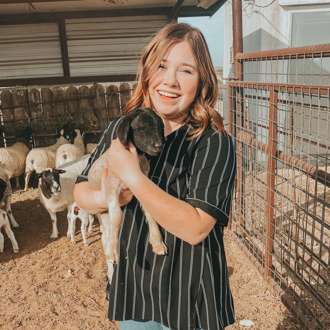 Pet Care Provider from Lubbock, TX 79401 - Care.com