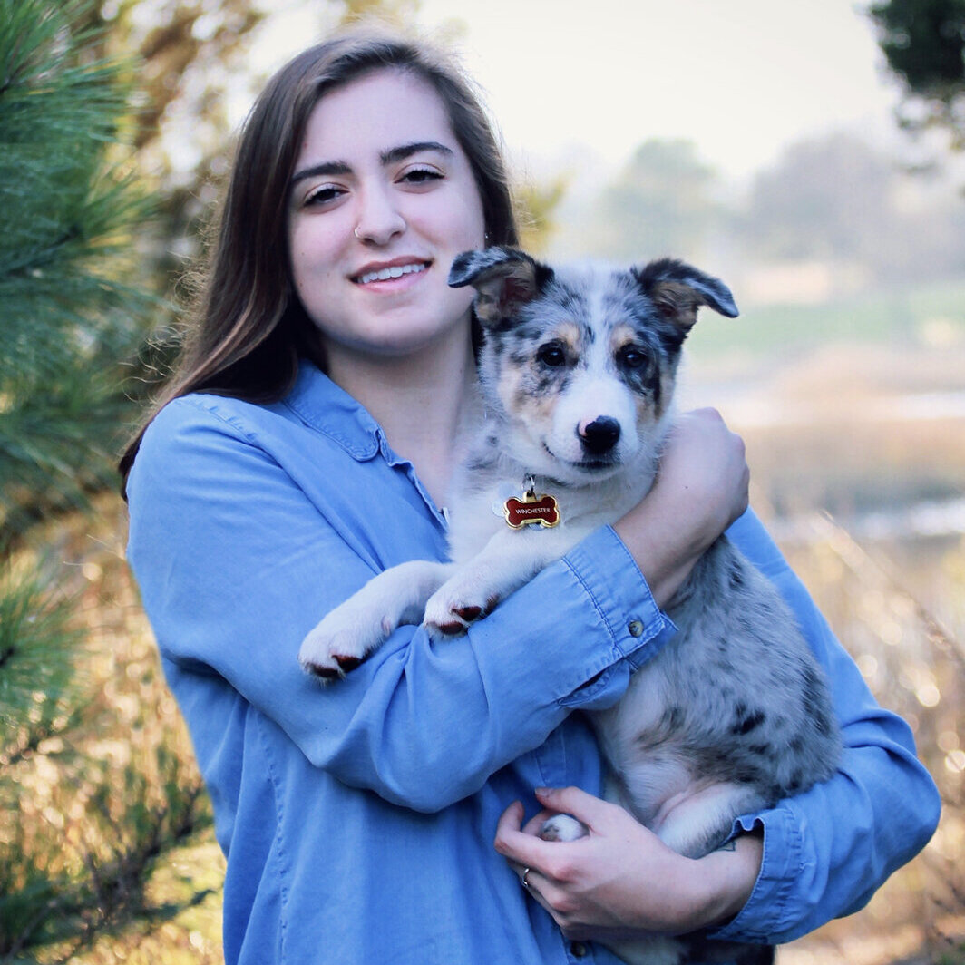 Pet Care Provider from Fairfax, VA 22030 - Care.com