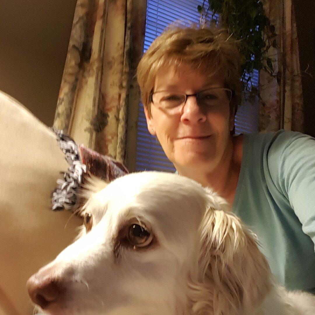 Pet Care Provider from Springfield, MA 01118 - Care.com
