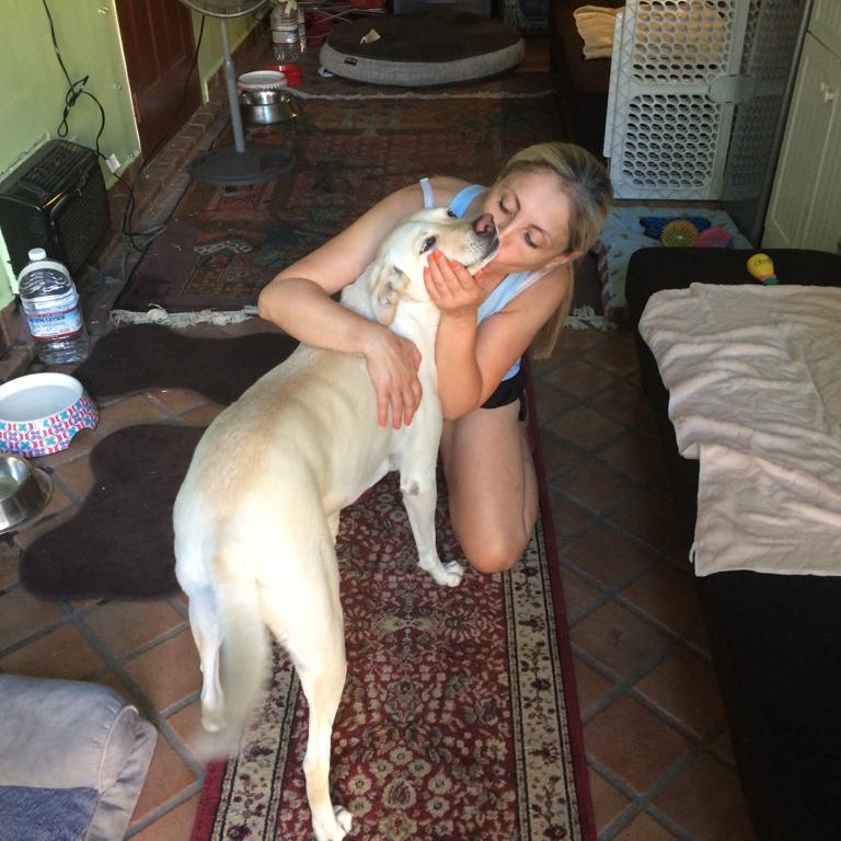 Pet Care Provider from Tarzana, CA 91356 - Care.com