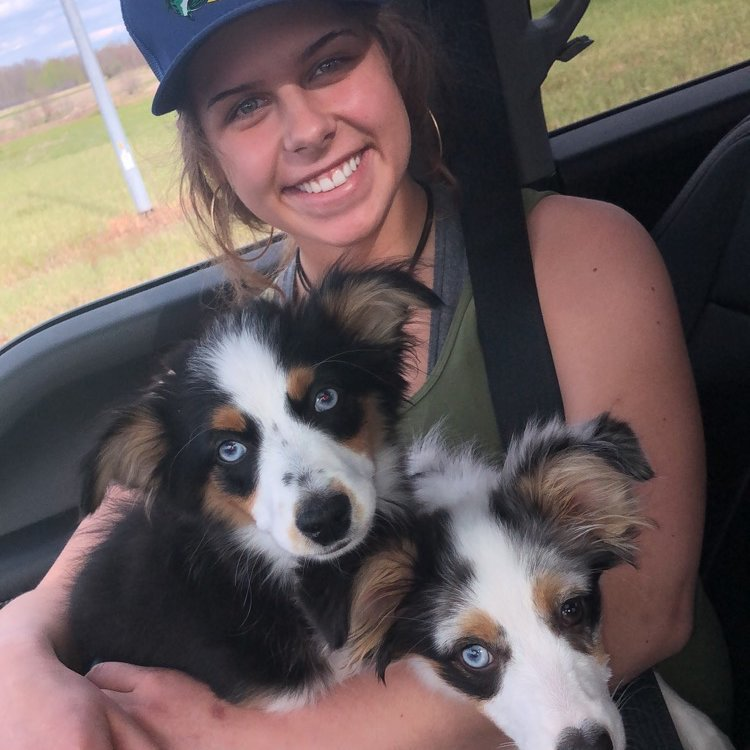 Pet Care Provider from Wisconsin Rapids, WI 54495 - Care.com