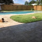 Photo for Dog Sitter For Walking And Overnight Sleep