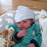 Photo for Nanny Needed For 1 Infant Near Cheesman Park