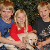 Photo for Live-In ONLY Babysitter Needed For 3 Children Darien