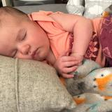 Photo for Nanny Needed For 1 Child In Pittsburgh