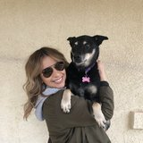 Photo for Looking For A Pet Sitter For 1 Dog In Brawley