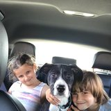Photo for Babysitter/After School Nanny Needed For 2 Children In Playa Del Rey