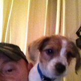 Photo for Looking For A Pet Sitter For 1 Dog In Atlanta