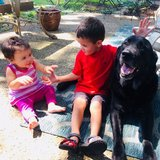 Photo for Nanny Needed For 2 Children In Dallas