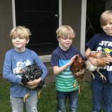 Photo for PT Summer Babysitter Needed For 3 Boys In Kenmore