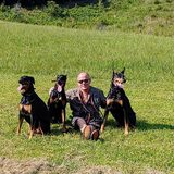 Photo for Sitter Needed For 4 Dogs In Port Saint Lucie