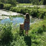 Photo for Awesome Brother And Sister In Need Of Part-Time After School Sitter/Nanny