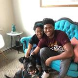 Photo for Sitter Needed For 1 Dog In Chicago