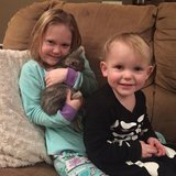 Photo for Babysitter/Nanny Needed For 2 Children In State College